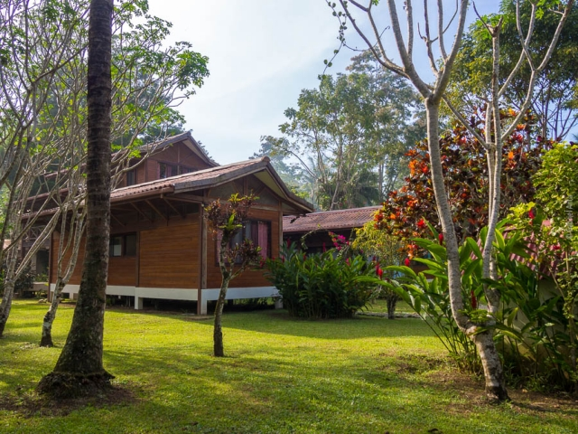 Hotel in Cahuita Kenaki Lodge Beach Front